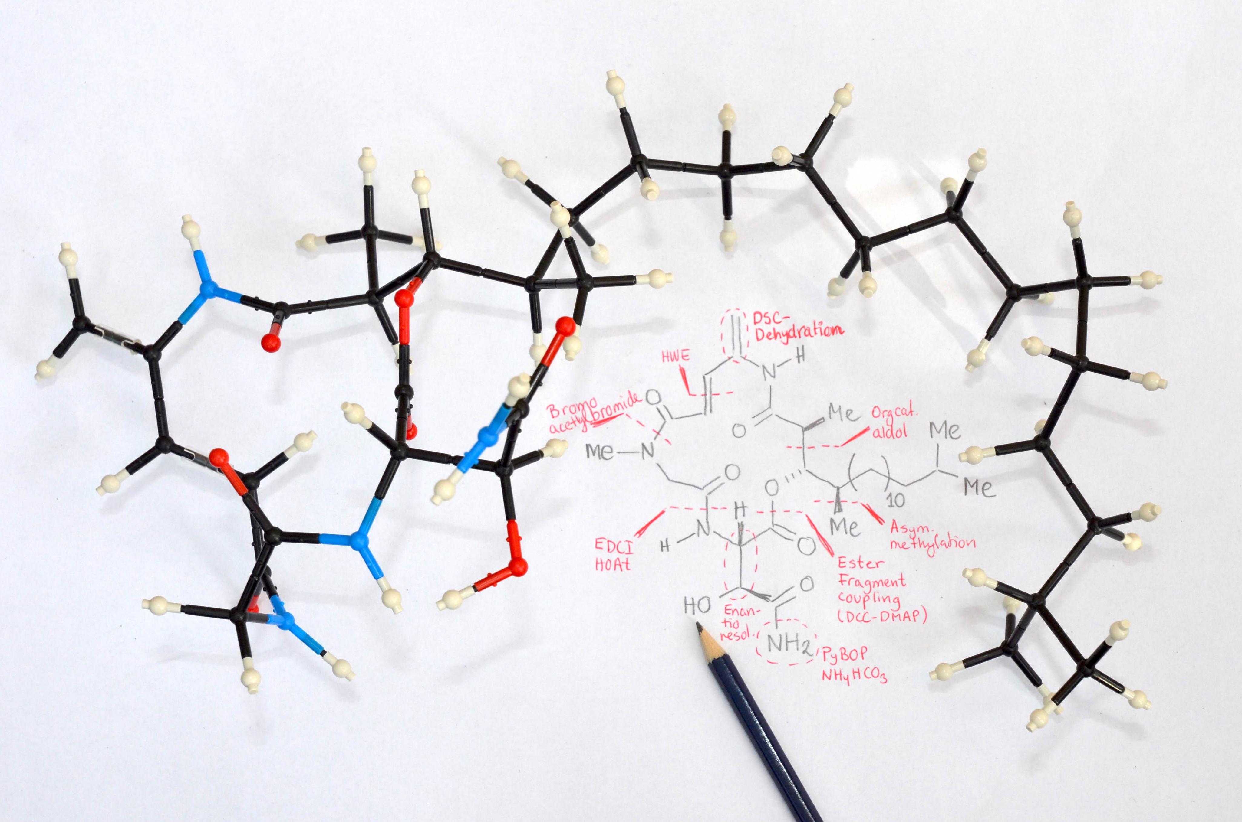 For at udvikle og afprøve nye naturstoffer skal forskere kunne manipulere med naturstoffers molekylære strukturer. Organisk kemisk syntese er nøgleteknologien til at eftergøre – men også videreudvikle – naturens egne konstruktioner. | Foto: Aarhus Universitet.