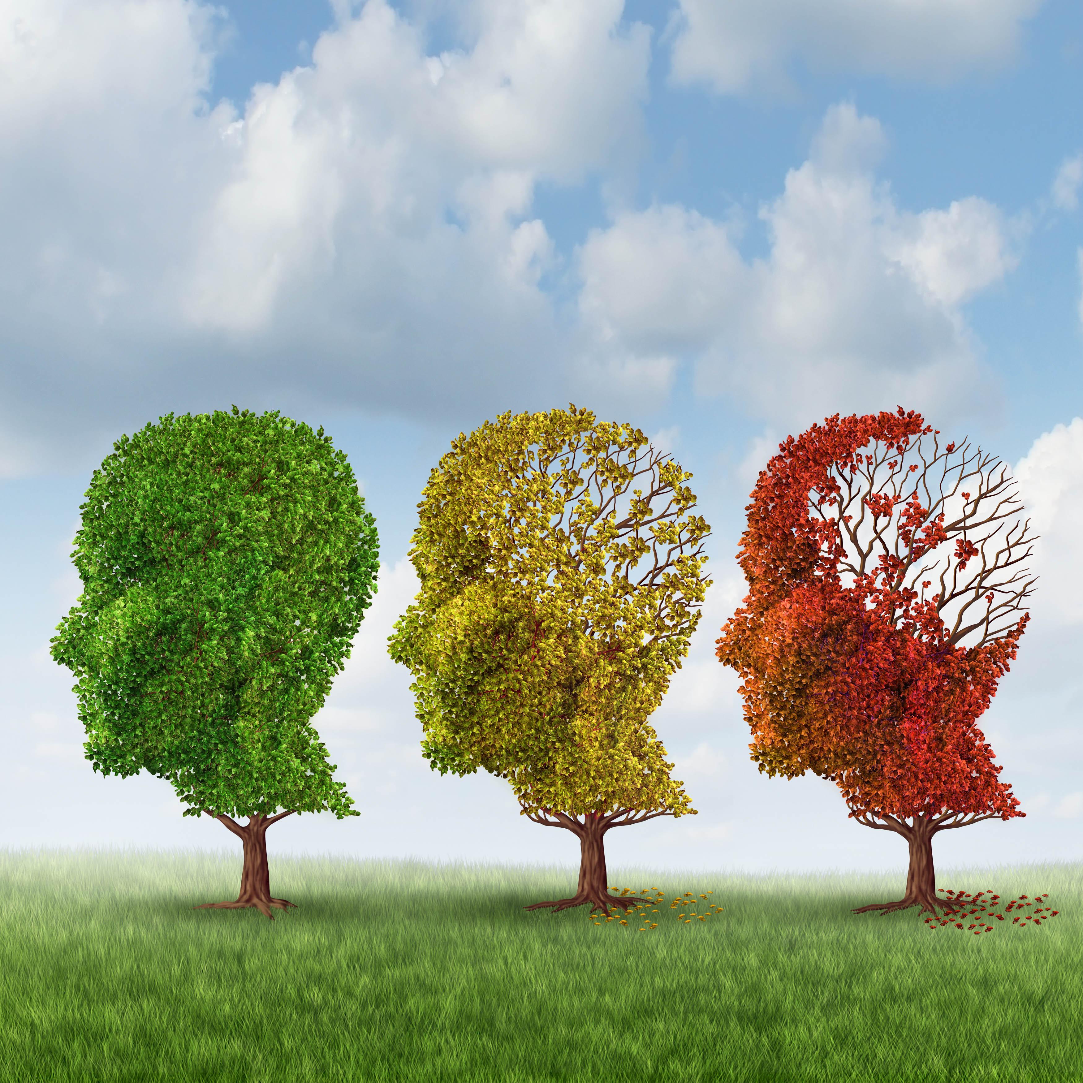 Mange oplever en vis grad af hukommelsestab når de kommer højt op i alderen. Forskere undersøger hvorvidt et højt niveau af reaktive iltmolekyler i hjernen bidrager til såkaldte neurodegenerative lidelser, som Alzheimers.
