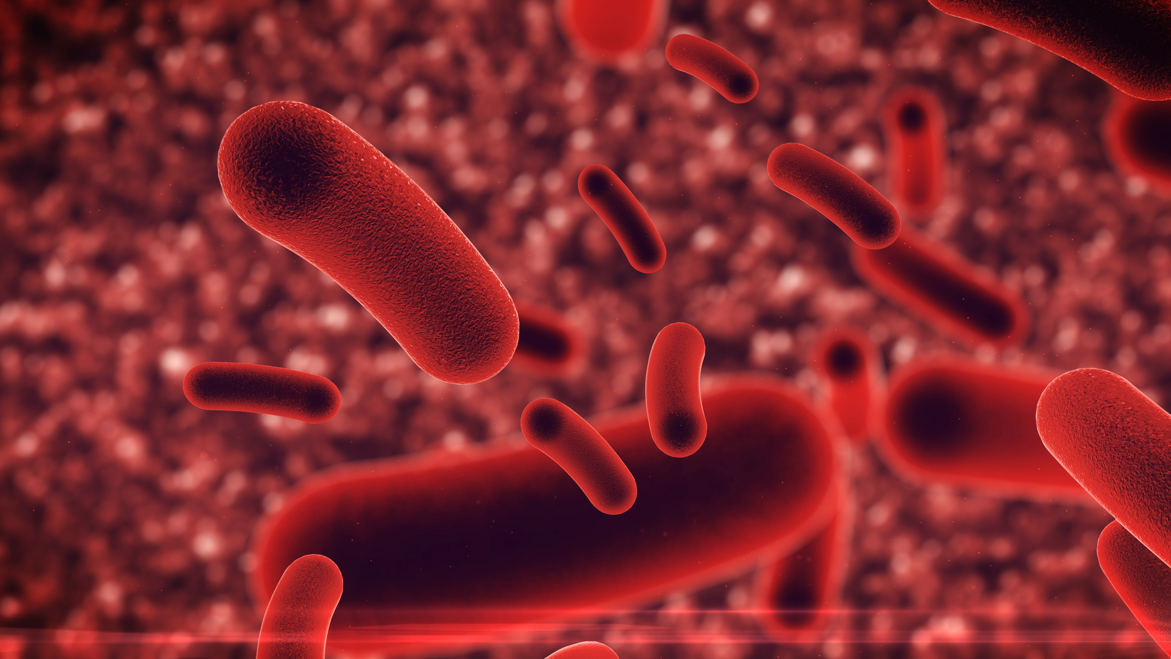 I menneskets tarm findes omkring 50.000.000.000.000 bakterier der fordeler sig på flere hundrede forskellige bakteriearter. De udgør verdens største kemifabrik. De danner nemlig mange stoffer der påvirker vores helbred.