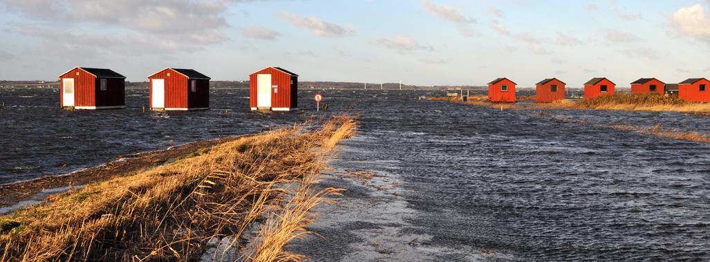 Oversvømmelse i Staun ved Limfjorden efter en storm fra nordvest. (Foto: Staunited, wikimedia.org)